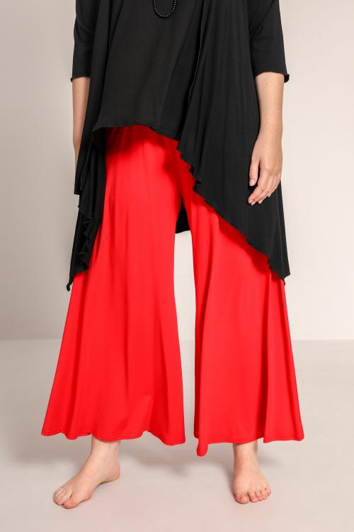 Pant skirt style pants